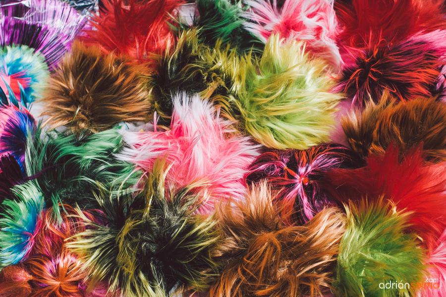 carnaval cadiz