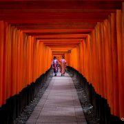 Japón. Un viaje por el país del sol naciente