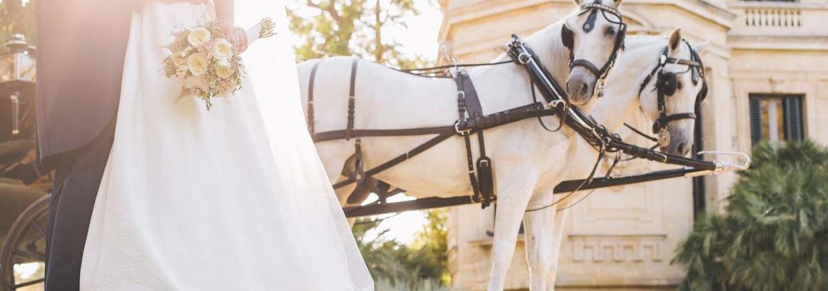 boda-caballos-real-escuela-andaluza-arte-ecuestre