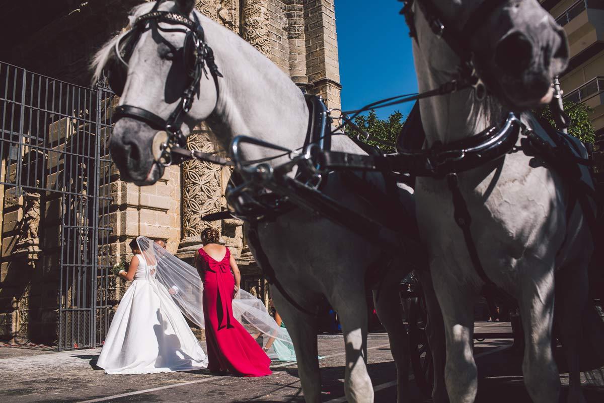 coche-caballos-real-escuela-boda