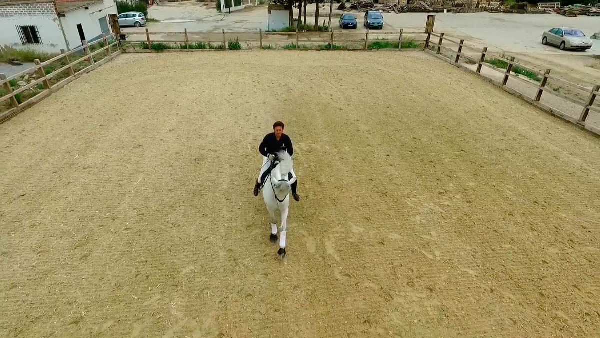 video-caballos-jerez-yeguada04